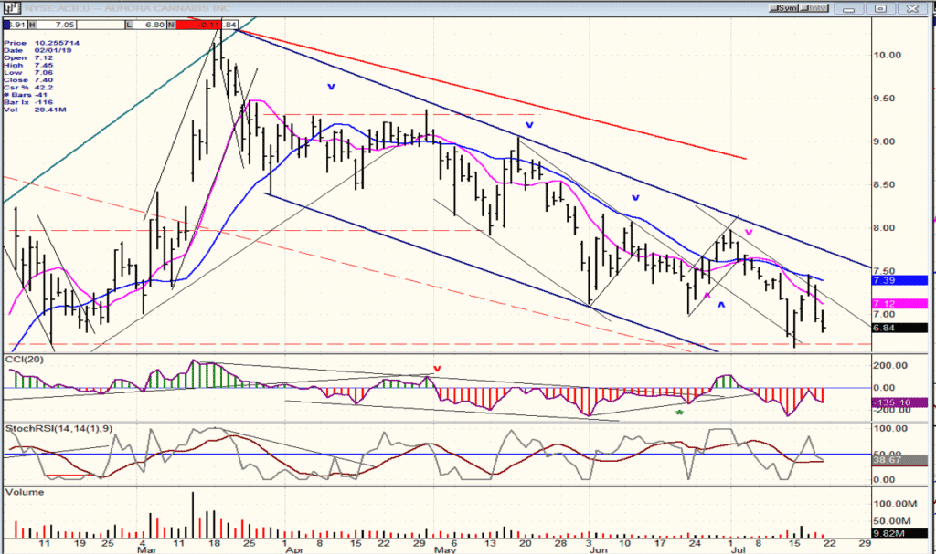 ACB Daily