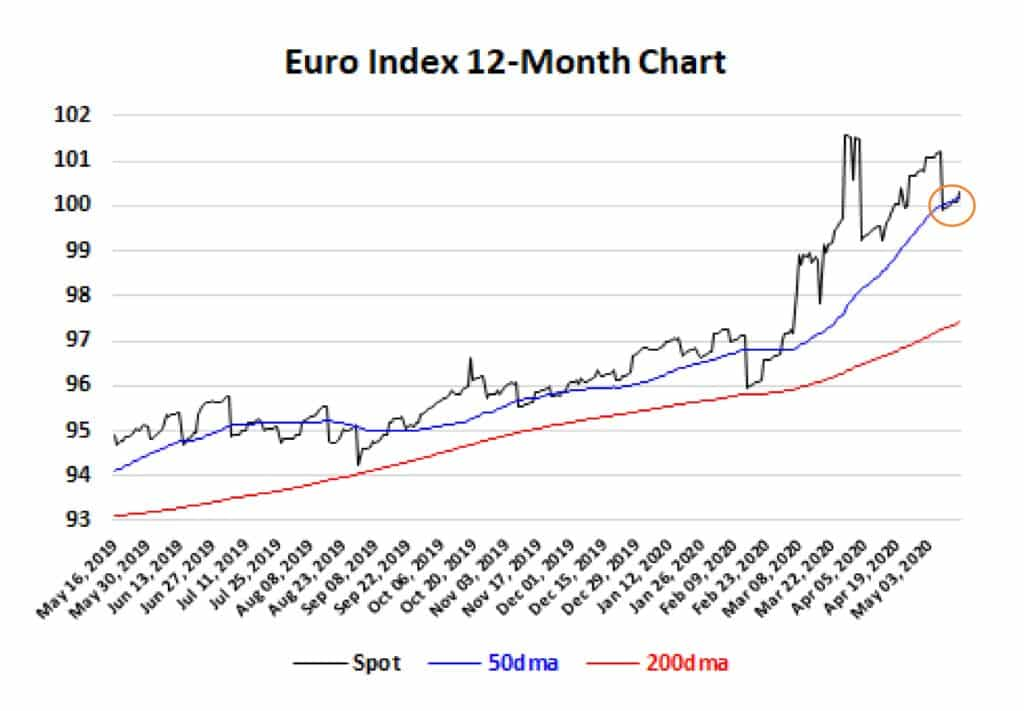 Euro Index 12 month chart