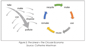 The Linear v The Circular Economy